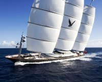 Maltese Falcon with Magma Structures Dyna-Rig